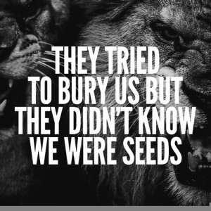 If Only They Knew We Were Seeds